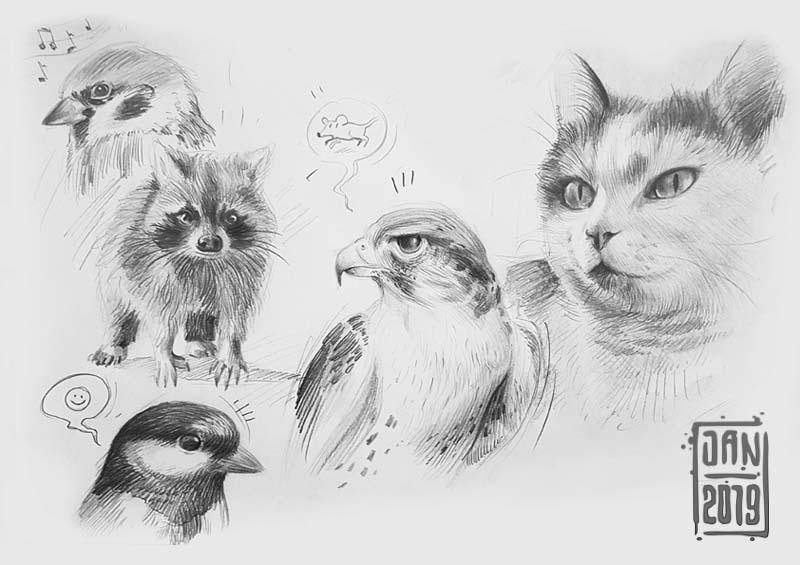 Illustration skizzenbuch tiere: katzen und habicht