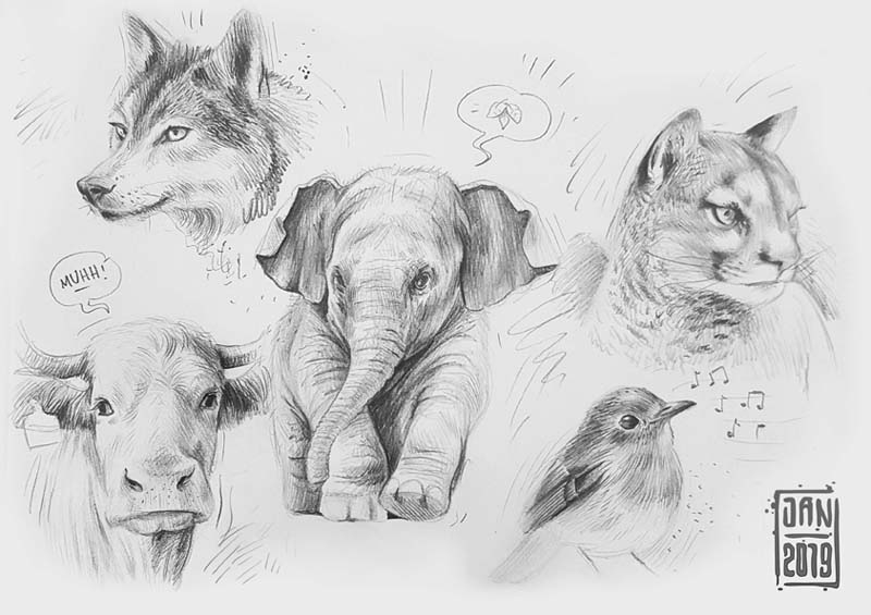 Illustration skizzenbuch tiere: wolf elefant kuh vogel